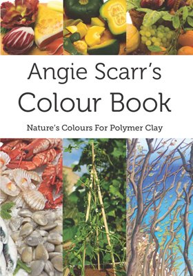 Angie Scarrs's Colour Book